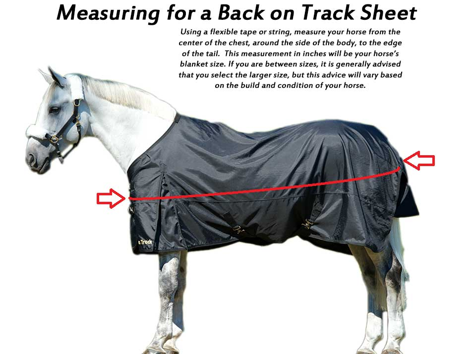 Back on Track Horse Blanket Breech Sizing Guide