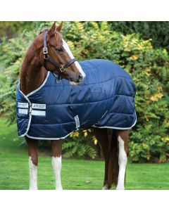Amigo Insulator Stable Blanket Medium Weight