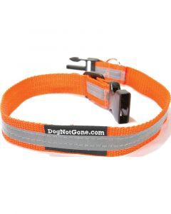 Dog Not Gone Reflective Collar
