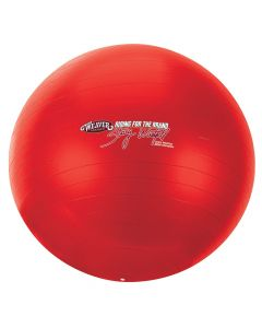 Stacy Westfall Activity Ball Large