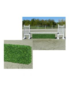 Burlingham Sports Boxwood Hedge