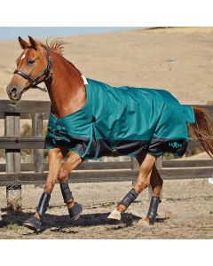 Saxon 1200D Standard Neck Heavy II Turnout Blanket