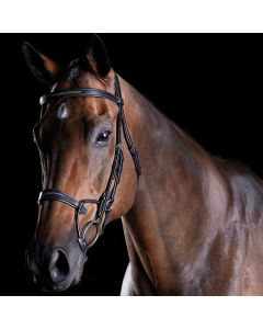 Collegiate Comfitec Fancy Stitched Bridle