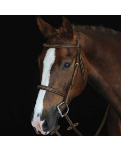 Collegiate Fancy Stitched Raised Cavesson Bridle