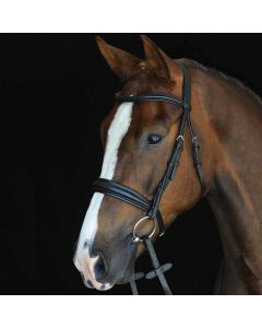 Collegiate Padded Raised Cavesson Bridle