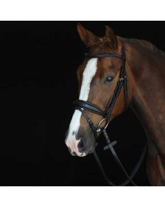 Collegiate Monocrown Padded Raised Flash Bridle