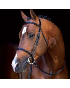Amigo Mio Leather Bridle