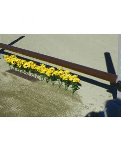 Burlingham Flower Strip Set