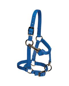 Weaver Mini Nylon Halter