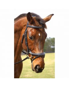Nunn Finer Aformadi Flash Bridle