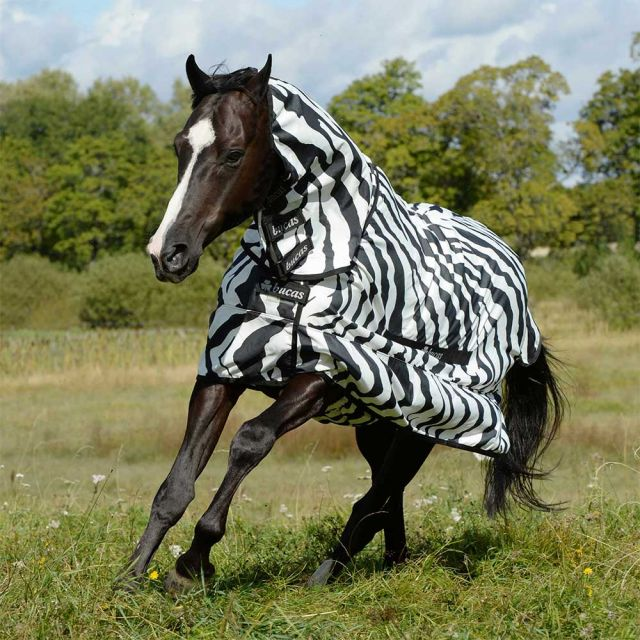 Bucas Zebra Sweet Itch Fly Sheet