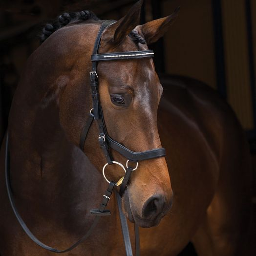 Rambo Micklem Diamante Competition Bridle