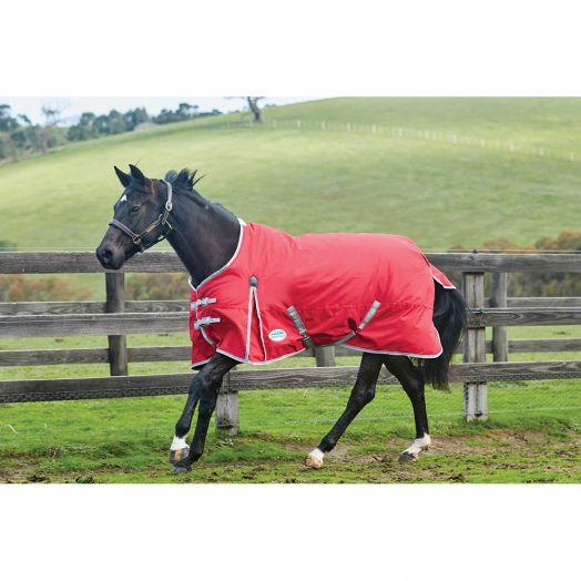Weatherbeeta ComFiTec Classic Standard Pony Lite